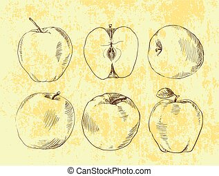 Set of highly detailed hand drawn apples.