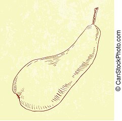 Pear fruit - vintage illustration - illustration of Pear...