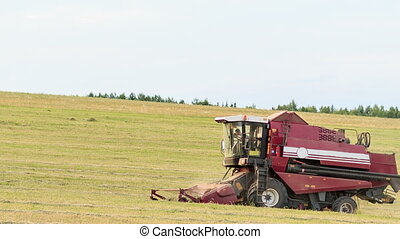 Combine harvester on the oats field
