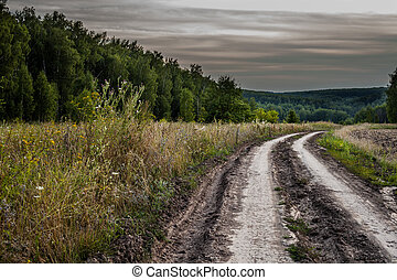 dirt road - Dirt road in field and stormy clouds