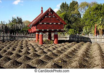 Te Parapara Maori Garden in Hamilton Gardens New Zealand -...