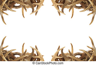 Deer Antler Border - A background border with whitetail deer...