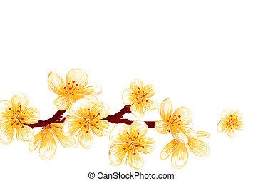 sakura - drawing of yellow sakuras in a white background