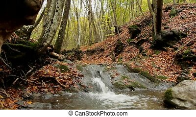 Waterfall In Forest - In a beautiful autumn forest runs a...