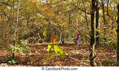 Woman In Autumn Park - A woman walks in the park and collect...