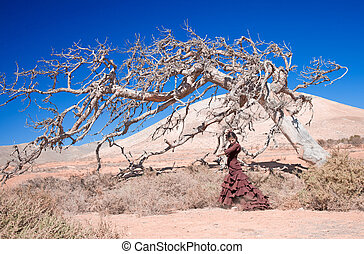 flamenco and dead tree - beautiful young woman dancing...
