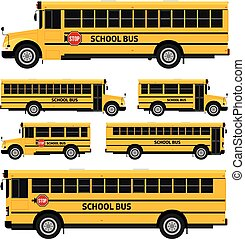 School buses - Flat vector school buses in two sides view