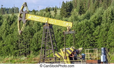 Oil pump on the forest background in the summertime