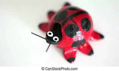ladybug on a white background
