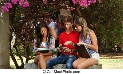 Group Of College Students Talking Studying And Having Fun -...