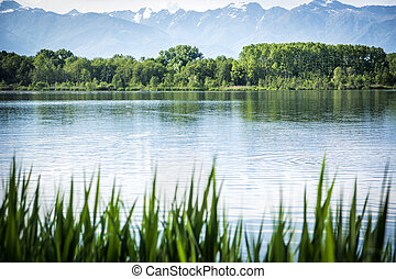 Peaceful scene of a lake surrounded by trees - Tranquil,...