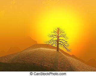 Lone Tree Foggy Sunrise - A lone winter tree against a foggy...