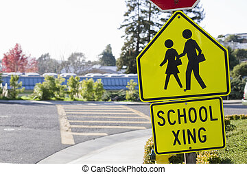 School Crosswalk With Stop Sign and School Xing Signs