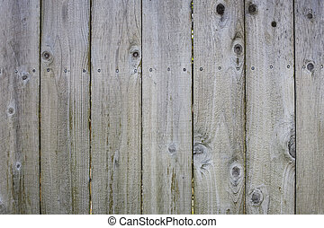 Closeup of Fence - Closeup Detail of a Backyard Wooden Fence