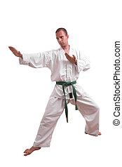 karate, hombre, aislado, blanco