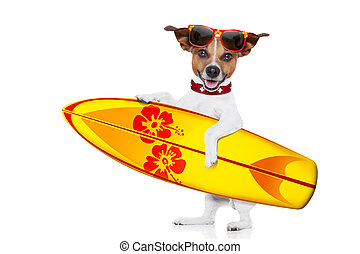 surfing dog selfie - silly funny cool surfer dog holding...