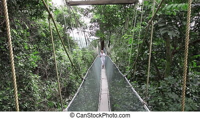 Woman walking on rainforest canopy walkway