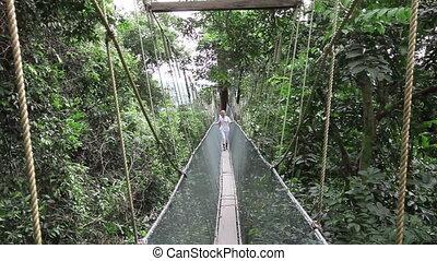 Woman walking on rainforest canopy walkway