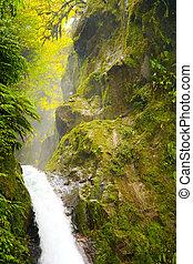 Costa Rica Catarata La Paz - The waterfalls La Paz, Costa...