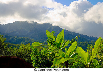 Mountains in San Jose, Costa Rica - The mountain views near...