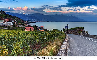 Lavaux region, Vaud, HDR - Lavaux region by sunset in Vaud,...