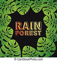 rain forest  design, vector illustration eps10 graphic