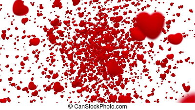 digital red hearts flying in vortex on white background with fade out, loop seamless. 4K and 1080 resolution. Valentine day love festive
