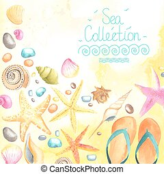 Shells and starfishes on sand background.