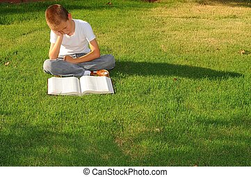 Boy Studying - Young boy outdoors on the grass reading a...