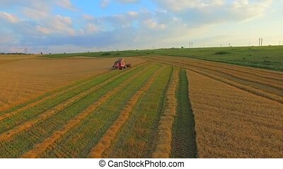 AERIAL VIEW A Wheat Field Being Harvested - AERIAL VIEW The...
