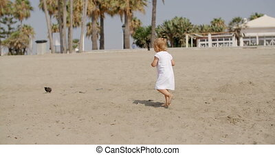 Little girl chasing a seagull running towards it across the...