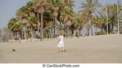 Curious little girl approaching a seagull on the beach in...
