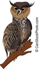 Horned Owl on a Branch - Cartoon great horned owl on a tree...