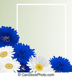 Vector white background with flowers camomile, cornflowers -...