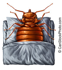 Bedbug Concept - Bedbug or bed bug concept as a parasitic...
