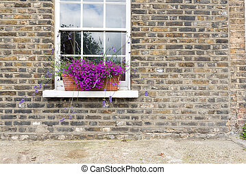 Purple Flowers in Window Box - Pretty Purple Flowers in...