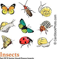 Vector Insects 9 Elements Set Seamless Pattern - Butterfly,...