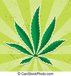 Cannabis leaf icon vector - Cannabis leaf icon on grunge...