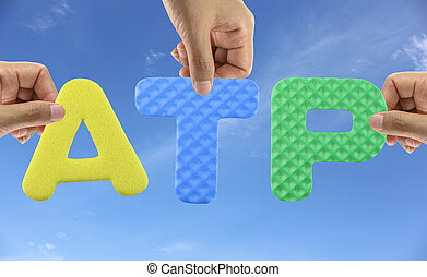 Hand arrange alphabet ATP of acronym Association of Tennis...