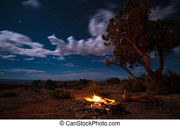 Bonfire under the Stars - Beautiful Bright Starry Night...