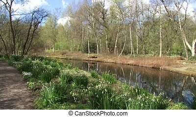Nature park in spring, pan footpath - ditch