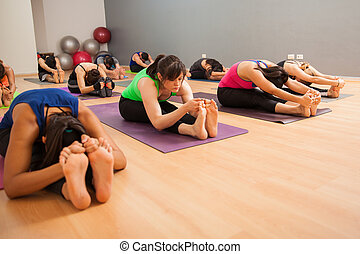 Large group of people doing yoga - Wide angle view of a big...