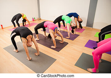Backbend pose in a yoga class - Large group of young women...