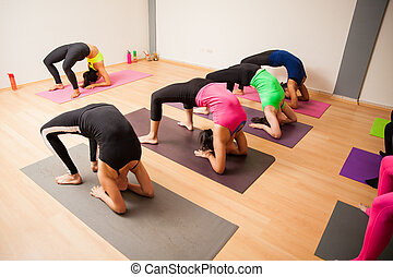 Yoga students following instructor - Wide angle view of a...