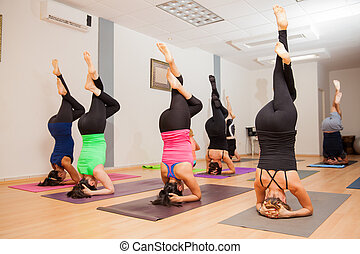Headstand in yoga class - Group of young people doing a...