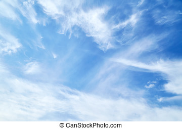 Cirrus clouds - Beautiful cirrus clouds in blue sky
