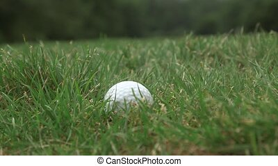 person picks up a golf ball out of the grass