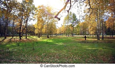 Older man through park in autumn forest in the light of the...