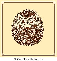 Sketch cute hedgehog in vintage style, vector