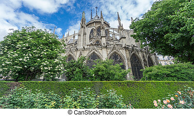 The rear view of the Notre Dame Cathedral in Paris - Wide...